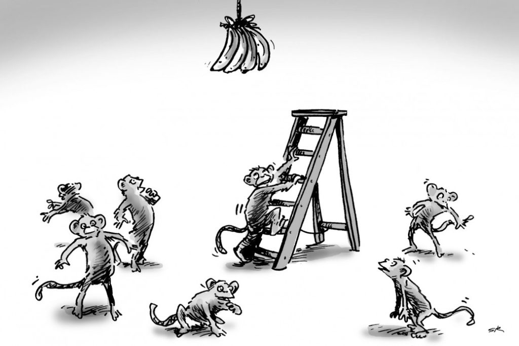 5 Monkeys and a Ladder Story