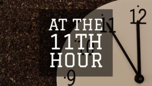 At the 11th Hour